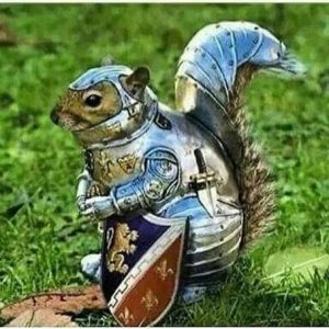squirrel dressed as a knight in shining armour