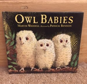 Front cover of Owl Babies by Martin Waddell and Patrick Benson
